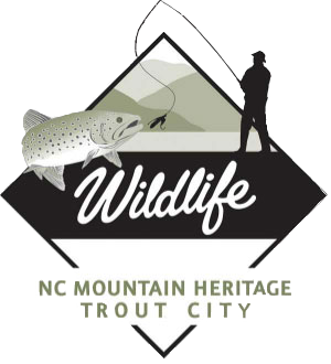NC Mountain Heritage Trout City